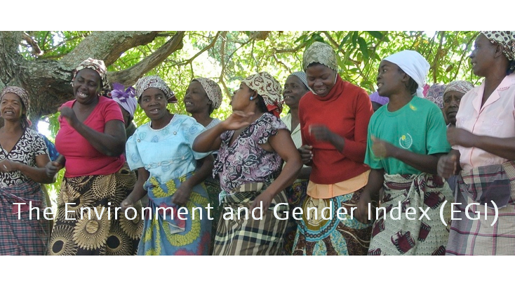 The Environment and Gender Index (EGI)